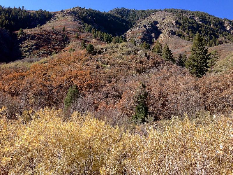 Waterton Canyon 020.jpg
