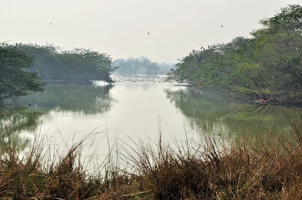 Sultanpur -Dec 2010