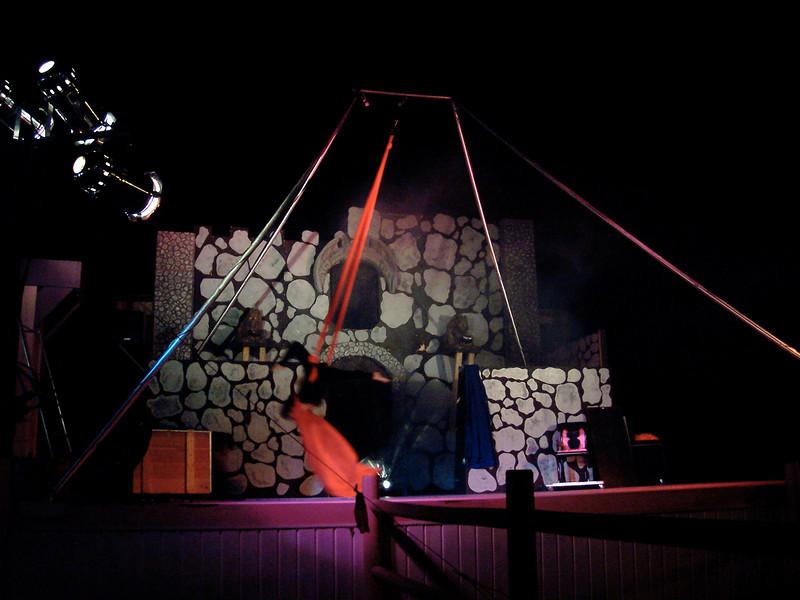 The show had aerial acrobatics.