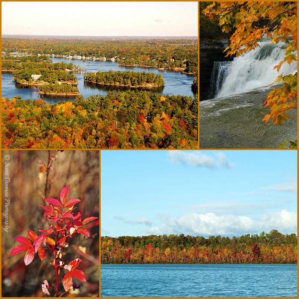 From top left: 1000 Islands, Letchworth State Park, Beaver Lake Nature Center and Webster Pond.