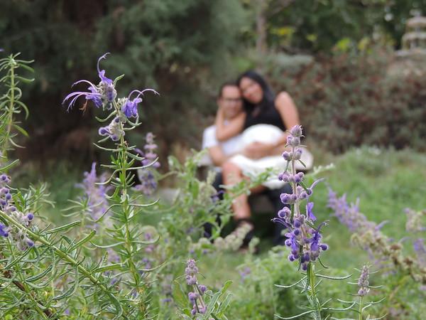 cici maternity