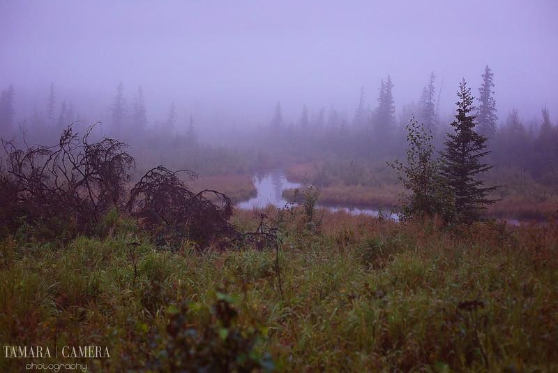 Eagle River-2.jpg