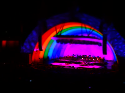 Cyndi Lauper at Hollywood Bowl
