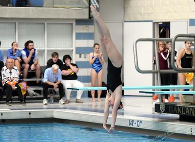HS Sports - 2019 Girls Swim State Finals Prelims