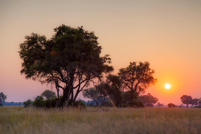 Botswana-57.jpg
