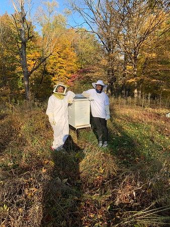 AG Business, Bees