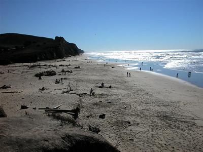 2002-02-09 San Gregorio Beach