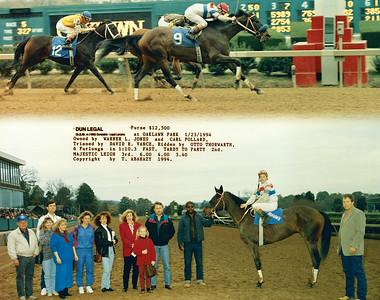 DUN LEGAL - 1/23/1994