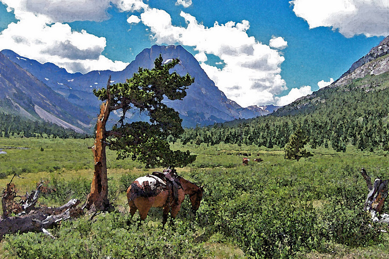 Horse back trip - Rocky Mountains