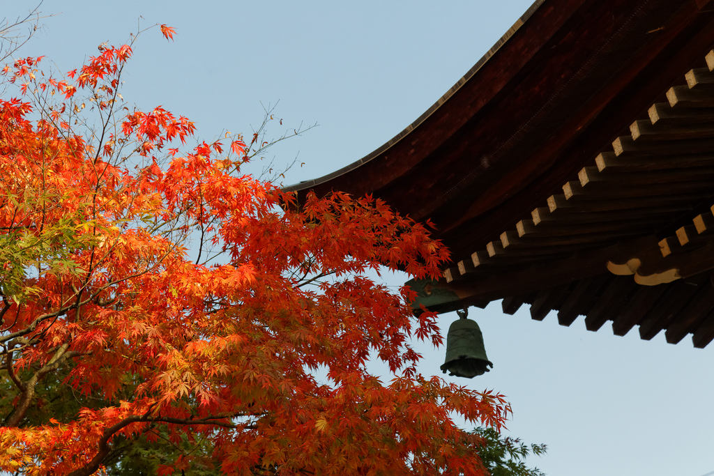 Autumn colors in Takayama