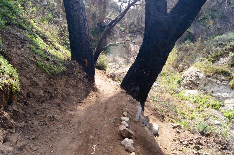 201201291643-El Prieto Trailwork.jpg