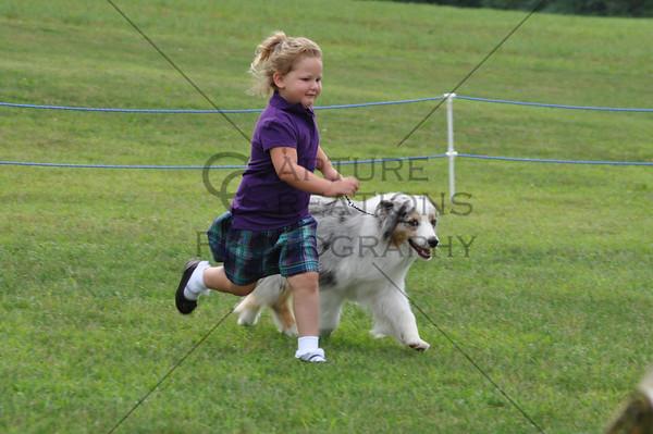 Sat AM Juniors, Puppies, Altered
