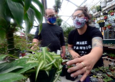 Photos: The Flower Bin in Longmont Celebrates 50-Years