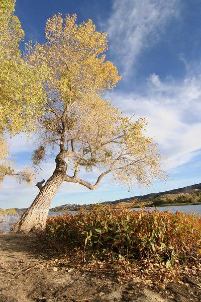 Lake Elizabeth 072_filtered.jpg