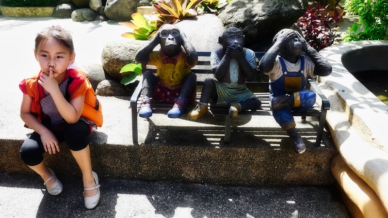 Rianne and the Monkeys