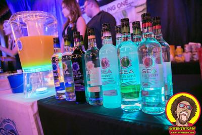 Vodka Rox 2017