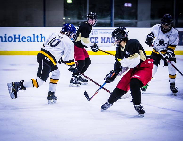 Bruins-209.jpg