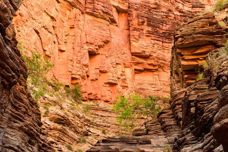 Above Matkatamiba - Grand Canyon National Park.jpg