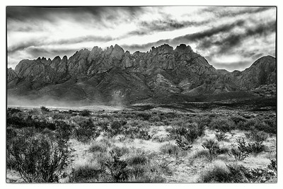 Organ Mountains NM, Jun 2014