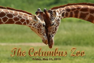 2019 Columbus Zoo (05-31-19)