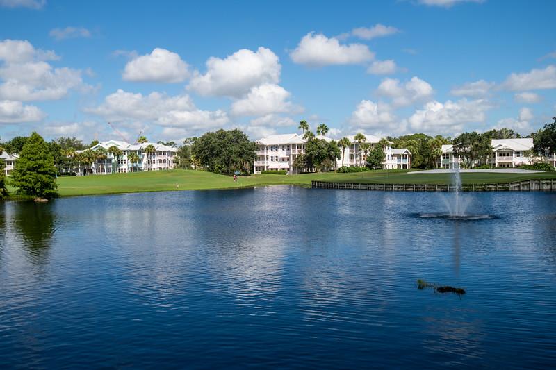 Dinsey Resorts-2-667.jpg