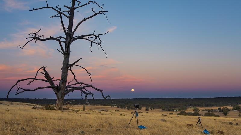 Eclipse Moonrise 35mm-8762.jpg