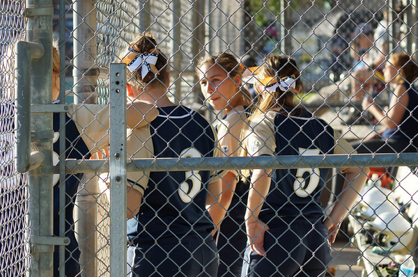 Softball v. Borroughs 3-12-14