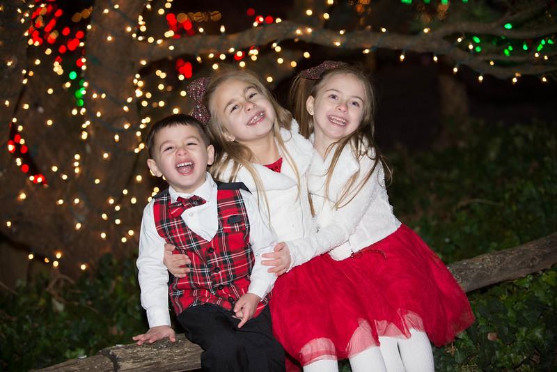 Fittizzi Family Portraits 12-2018