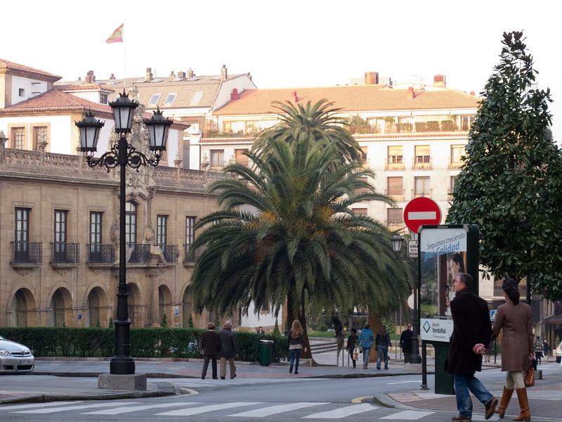 Palm Trees in Asturias