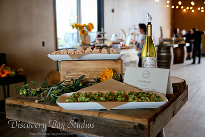 Campos Family Vineyards Fall Wine Club Release Party 10-19-17 (Sabrina Barton)