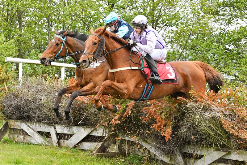 Crindle Carr och Accelerate Blommeröd 200523 Foto: Stefan Olsson / Svensk Galopp
