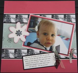 Mary's Baby Book