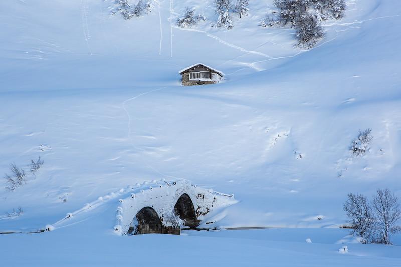 Rheinwald-Winter-D-Aebli-067.jpg