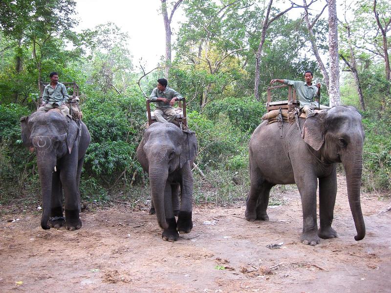 Chitwan 028.jpg
