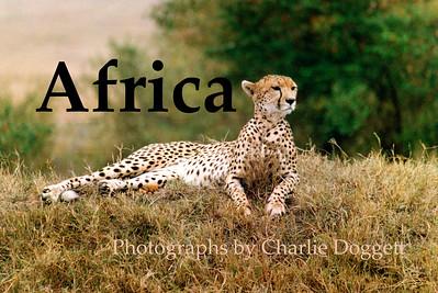 2005 AFRICA PORTFOLIO