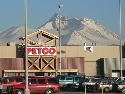 Petco Anchorage