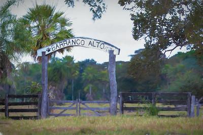 Fazenda Landscapes