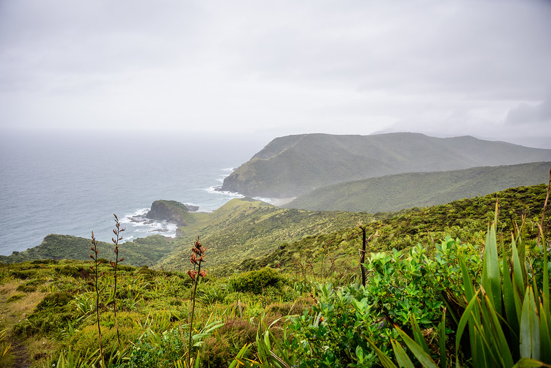 2018 KTM New Zealand Adventure Rallye - Northland (287).jpg