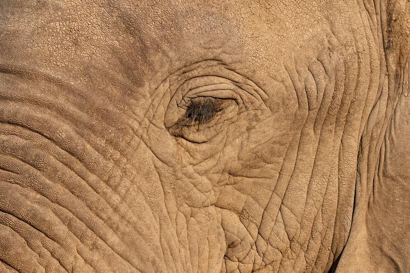 Namibia E4A4800.jpg