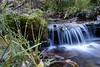 Long Exposure of Creek, CO.