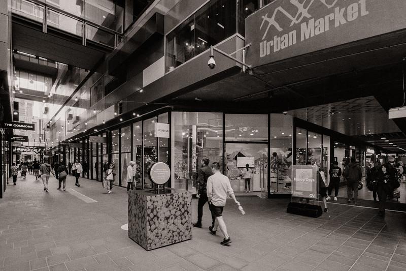 Albert Coates Lane