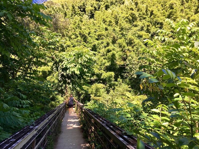 Walking Pipiwai Trail
