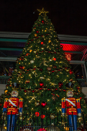 Christmas Tree Lighting Ybor 2013