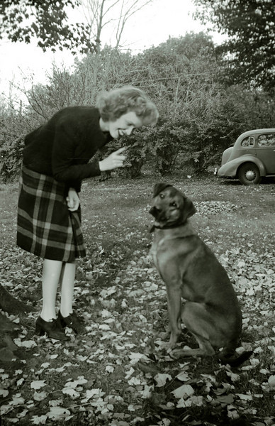 Lalla admonishing unidentified dog.  WWII era.