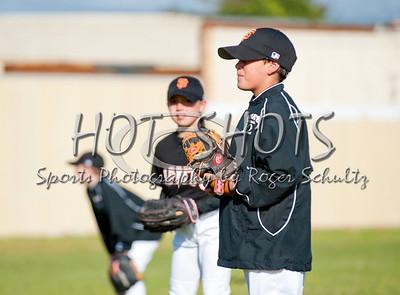 Farm Baseball