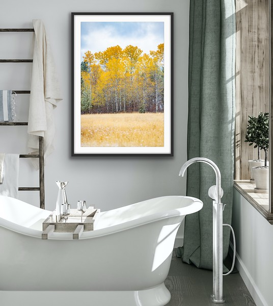 'Fall Colours' Fine Art Print Framed/Unframed