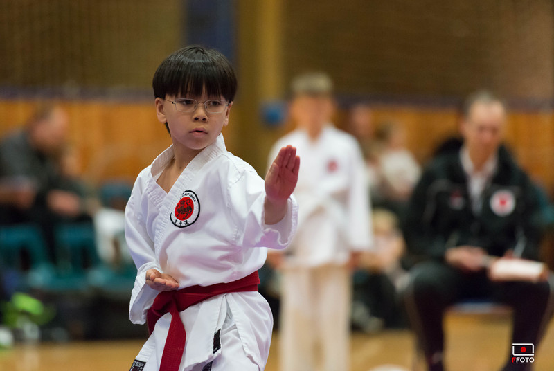 Taastrup karate klubmesterskab 2014 -DSC_3455.jpg