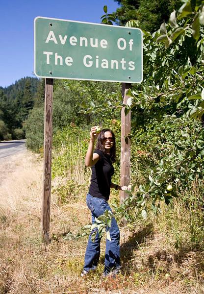 giant_apples.jpg