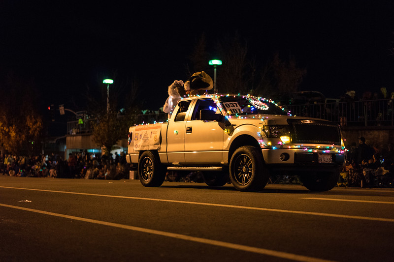 Light_Parade_2015-08103.jpg