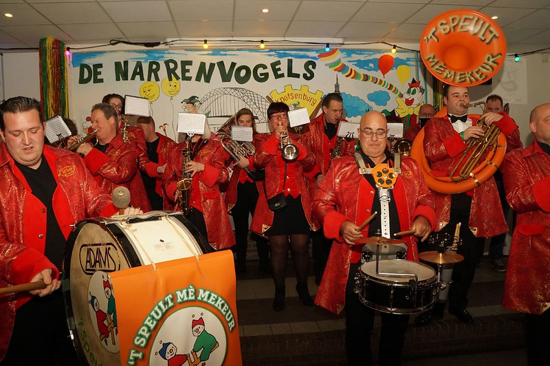 De Narrenvogels